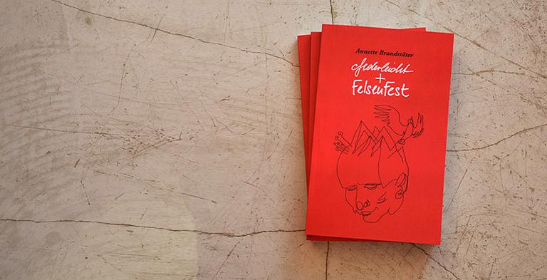 das Buch von Annette Brandstäter zum Heilungserfolg von Krebs