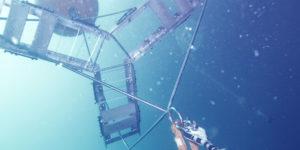 Spielerische Wissensvermittlung im Ozeaneum