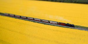 """Die """"Molli Bahn"""" auf neuen digitalen Gleisen"""